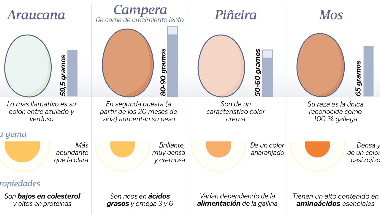 Cuatro variedades de huevo