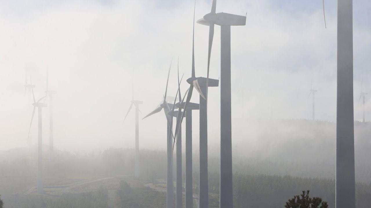 Lantania bebe los vientos por Galicia