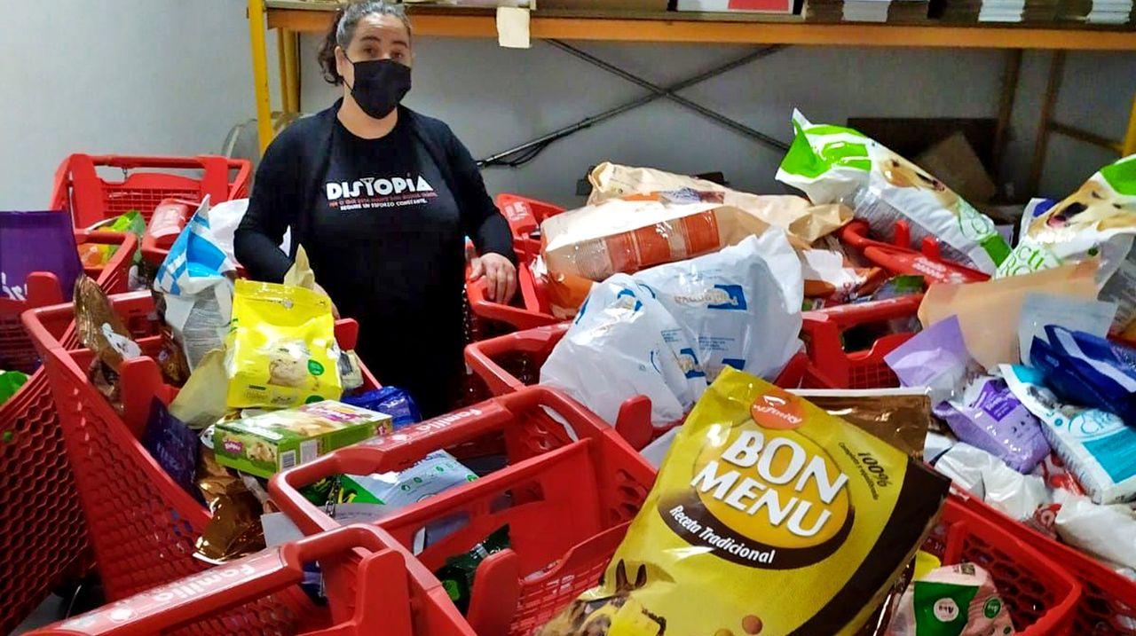Los empresarios de La Palma costean un avión para llevarse la comida de mascotas donada por los vigueses