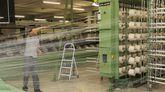 La firma gallega produce anualmente más de ocho millones de metros de tejido que exporta a diversos países del mundo.
