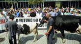 Trabajadores del Concello se unieron a los representantes políticos, sindicales y a los ganaderos en la concentración celebrada en Lalín.