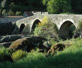 La vegetación crece en la estructura del puente y en las orillas.