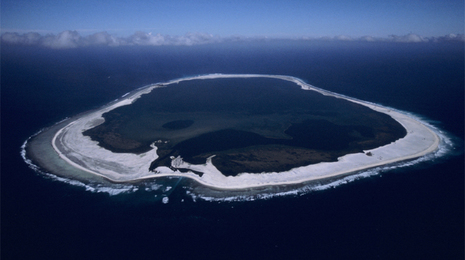 Francia creará la mayor reserva marina protegida del mundo