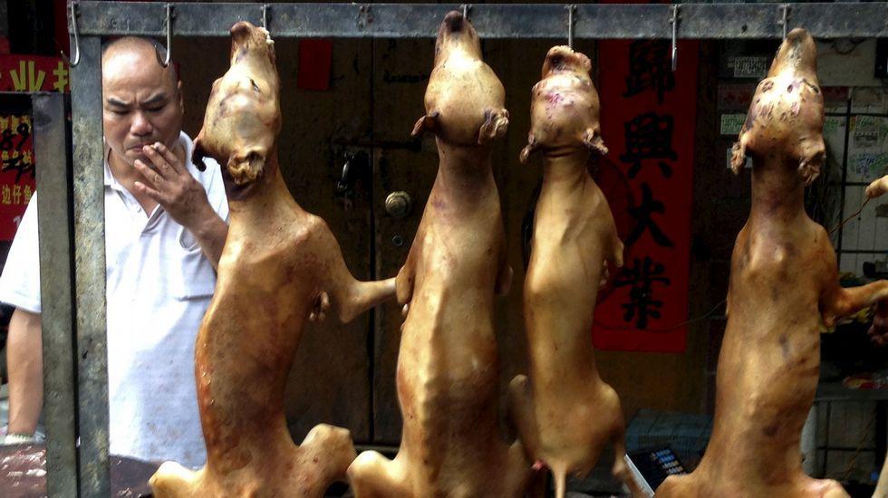 Un vendedor de carne de perro.