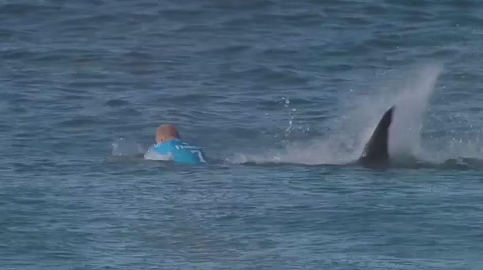 El ataque de un tiburón a Mick Fanning