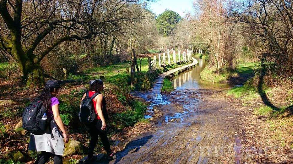 El Camino Portugués, en auge