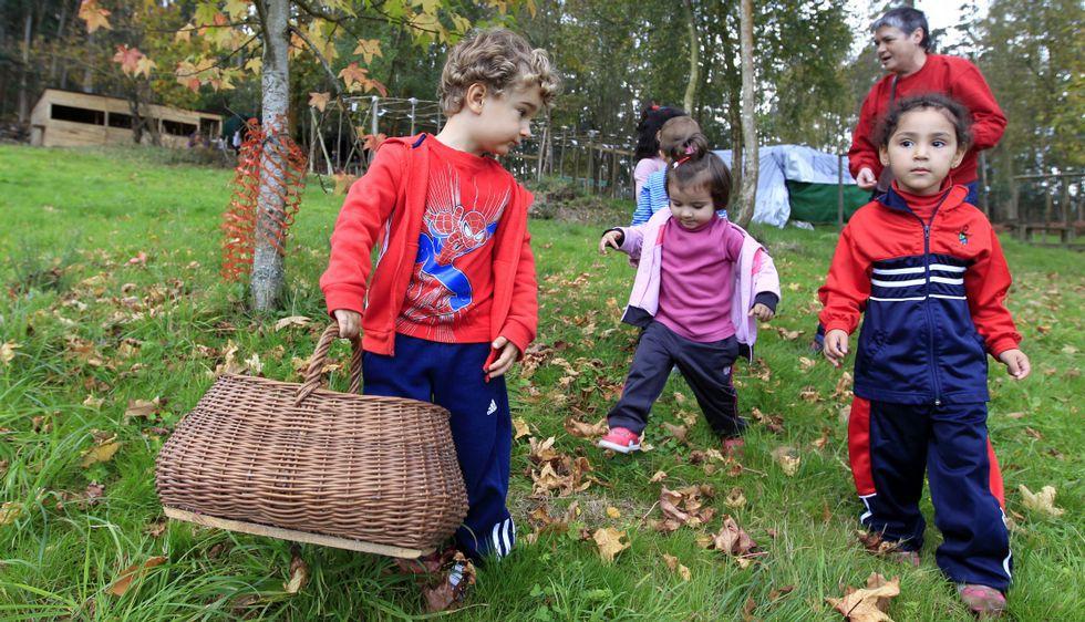 Otros alumnos de A Mariña, los de San Miguel de Reinante, visitaron un bosque autóctono.