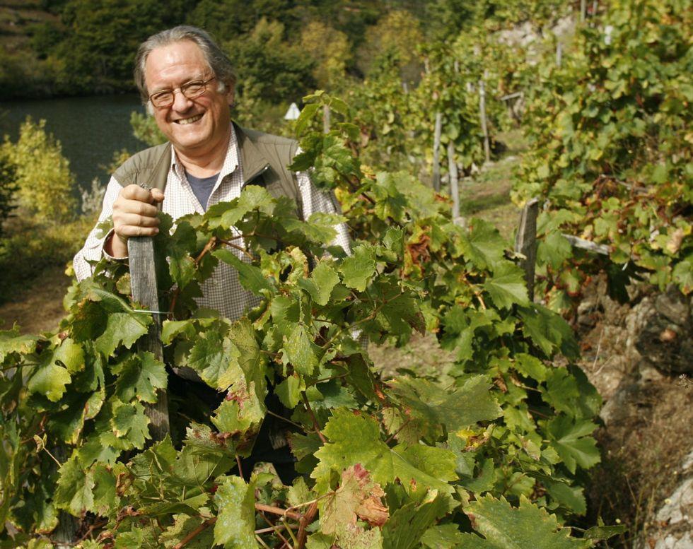 Gerry Dawes, en una viña de la ribera de Belesar, durante un reciente viaje a la Ribeira Sacra.