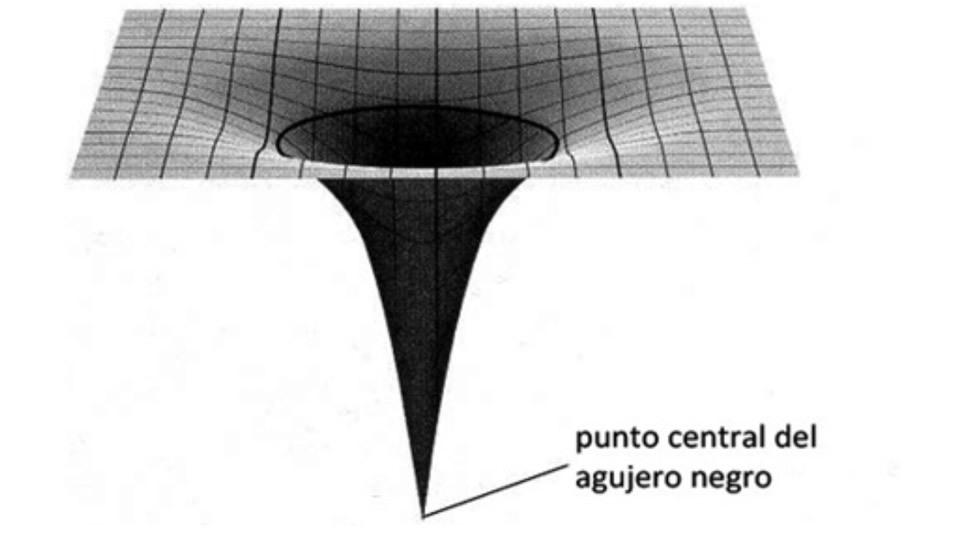 Geometría curvada