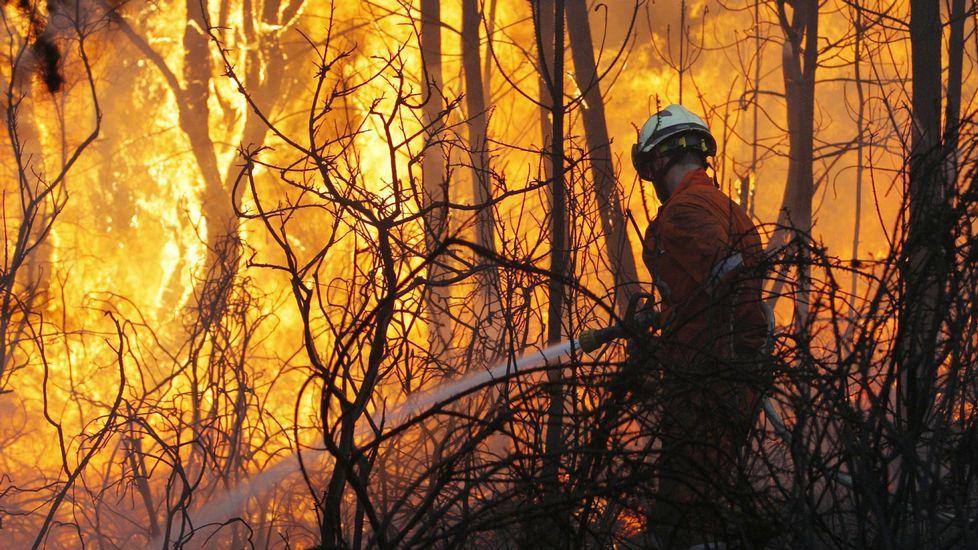 Incendios forestales. Aplicación España en llamas. - Página 3 B27M2095